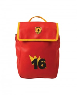 Ferrari Picnic bag pack